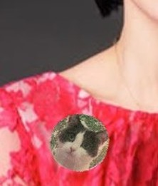 Make and Wear a cat pin